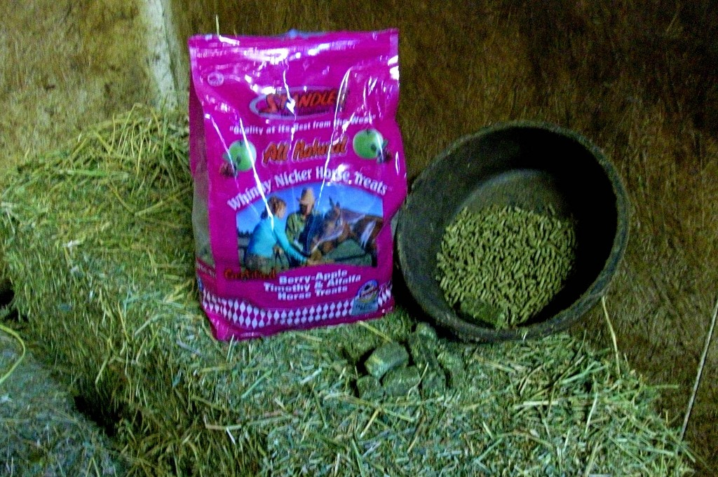 How I feed my Stanlee Treats to my horses