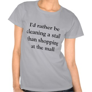 Stall cleaner t-shirt - click for more details