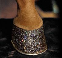 twinkle toes hoof