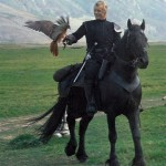 The movie that started the Friesian horse craze in the USA - Ladyhawke