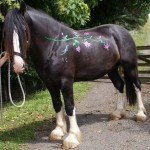 Dress up your horse part 2 - Stencils and glitter